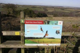 red-kite-viewing-point