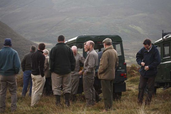Members of Natural England's Hen Harrier project