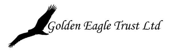 Eagle-Logo-Ireland.600