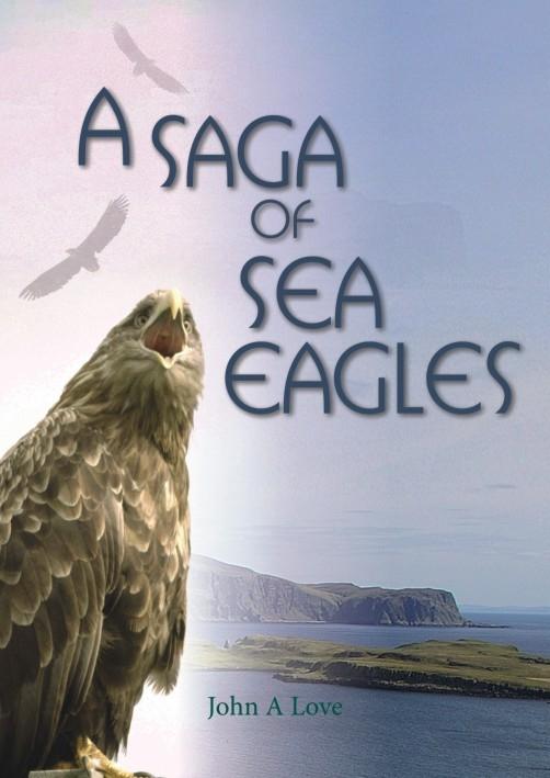 Sea Eagles thumbnail
