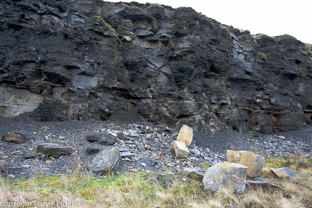 Peregrine Cliff Destroyed 2015-1
