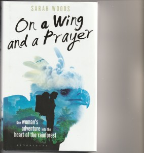 Photo of wing and a prayer