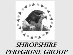 shropshire peregrine group logo