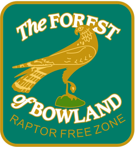 Forest-of-BowlandWEB