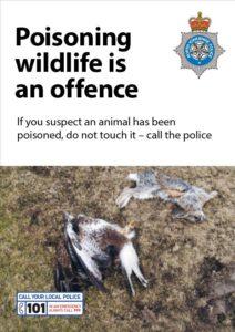 Wildlife-poisoning-poster-1-212x300