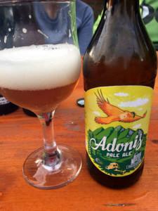 adonis2